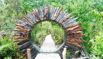 Agrowisata Hutan Mangrove Kurau Kabupaten Bangka Tengah