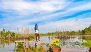 Eksotisme Sungai Upang, Surga yang Terlupakan di Tanah Bawah