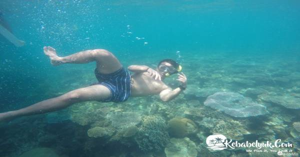 Paket Snorkeling Di Pulau Putri Belinyu