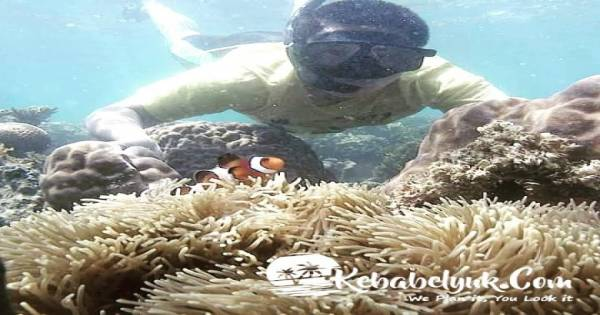 Sewa Alat Snorkeling di Pulau Ketawai